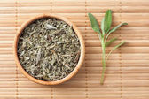 Common Sage — Stock Photo