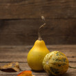 Ornamental gourds — Stock Photo #43348783