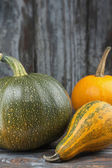 Assorted Autumn Squash — Stock Photo