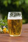 Picnic beer — Foto de Stock