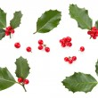 Holly leaves and berries — Stock Photo #45064895