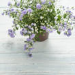 Purple Flowers — Stock Photo #46459601