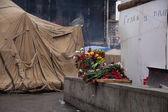 Flowers in memory of murdered on Euromaidan — Stock Photo