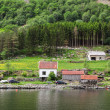 Stock Photo: Village on Sognefjord in Norway