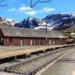 Stock Photo: Railway station in village of Myrdal, Norway