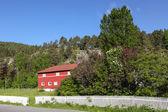 La casa en la las montañas, noruega — Foto de Stock