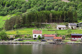 Village on the Sognefjord in Norway — ストック写真