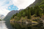The mountains on the Sognefjord - Norway's largest fjord — Stockfoto