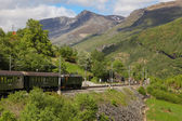 "Train ""Flamsbana""  on the Flam railway — Stockfoto"