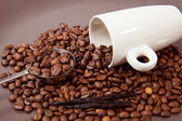 White cup and coffee grains — Stock Photo