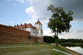 The mediaeval castle in Belarus — Stock Photo