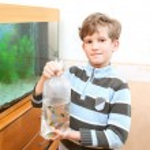 Постер, плакат: Boy holds package with aquarium fish