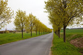 Countryside in north Germany — Stock Photo