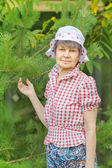 Elderly woman hold branch of  pine — Foto Stock