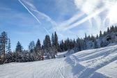 Skiers on piste — Stock Photo