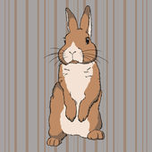 Fluffy brown standing rabbit — Stock Vector