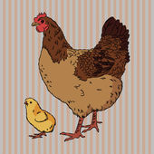 Realistic broody chicken and baby chick side view — Stock Vector