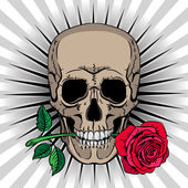 Skull holding a rose in his mouth — Stock Vector