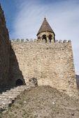фотографии ананури и жинвали в регионе грузии. церковь. — Стоковое фото