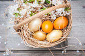 Multiple colored eggs in Easter basket — Stockfoto