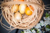 Easter egg basket — Stock Photo