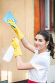 Cleaning lady at work — Stock Photo