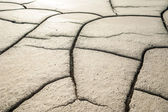 Moon like looking cracked soil surface — Stock Photo