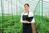 Greenhouse female inspector — Stock Photo