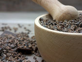 Cacao nibs in pestle — Stock Photo