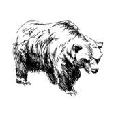 Рука рисунок медведя — Cтоковый вектор
