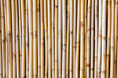 Bamboo background in vertical line — ストック写真