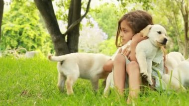 Little Girl Playing With Puppies — Stock Video