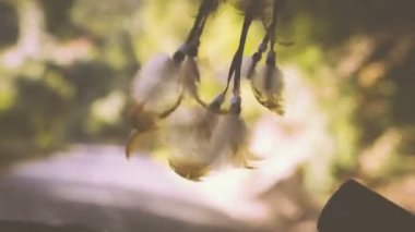 Dreamcatcher — Stock Video