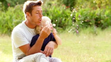 Father and son blowing dandelions — Stockvideo