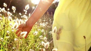 Girl is walking through grass — Stock Video