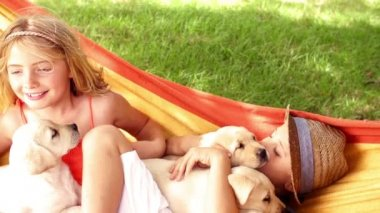 Children with puppies lying in hammock — Stock Video