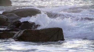 岩にはねかける波 — ストックビデオ