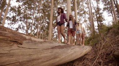 Friends Balancing on tree — Stock Video