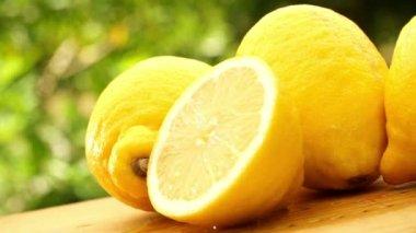 Yellow fresh lemons — Stock Video