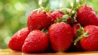 Strawberries — Stock Video