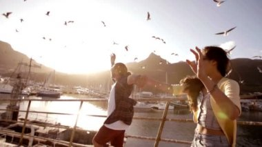 Couple watching the seagulls — Stockvideo