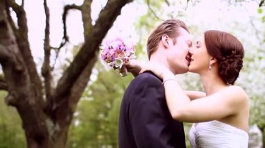 Bride and groom kissing — Stock Video