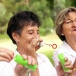 Senior ladies blowing bubbles — Stock Video #45452599