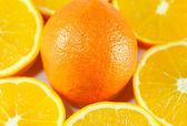 Oranges wallpaper — Stockfoto
