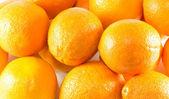 Świeże pomarańcze — Zdjęcie stockowe