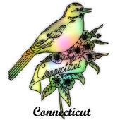 Connecticut eyalet kuşu — Stok fotoğraf