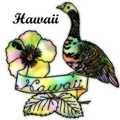 Hawaii State bird — Stock Photo