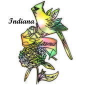 Indiana State bird — Stock Photo