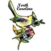 North Carolina State bird — Stock Photo