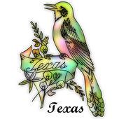 Teksas eyalet kuşu — Stok fotoğraf